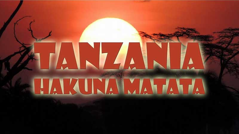 RE-LIVE THE LION KING EXPERIENCE IN TANZANIA