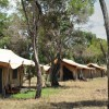 Lemala Mara Tented Camp