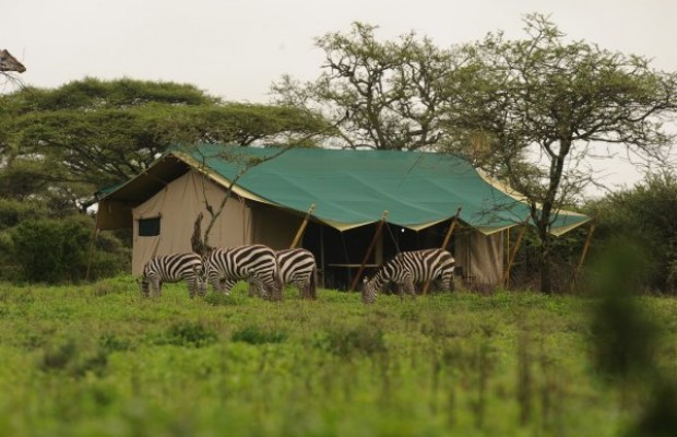 Nasikia Mobile Camp Ndutu- view