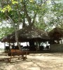 Selous Mbega Camp view