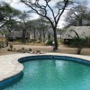 Tandala Tented Camp pool view
