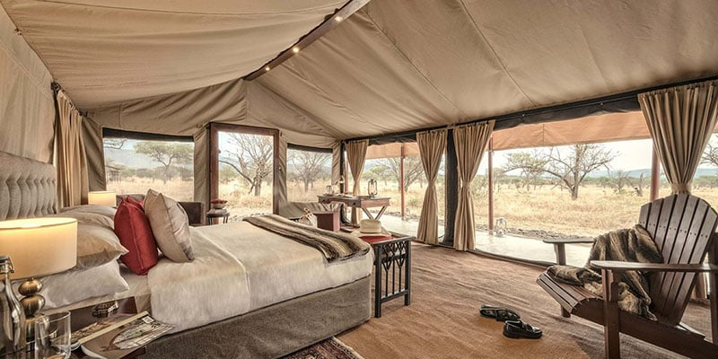 The Best Time for a Serengeti Safari?
