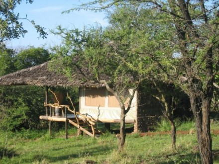 mbalageti safari camp