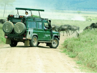 tanzania safari offer