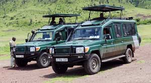 luxury tanzania safari
