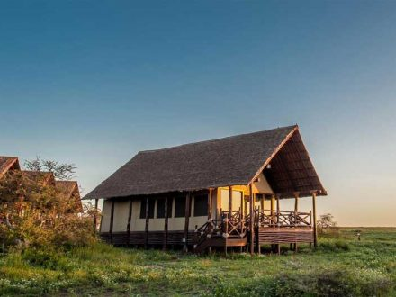 lake ndutu luxury tented lodge