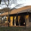 mara under canvas tented camp view