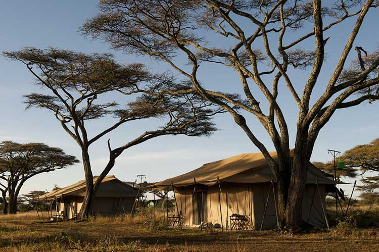mara under canvas tented c& & Mara Under Canvas Tented Camp |