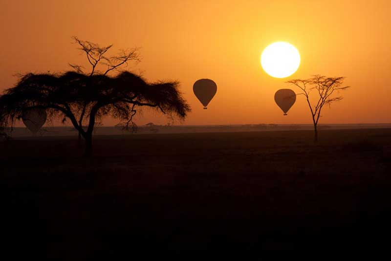 10 Things You Should Know Before Your Safari